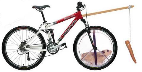 gerbil_bike.JPG