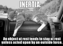 inertia-cat